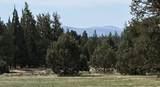 23465 Bear Creek Road - Photo 24
