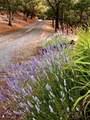 5196 Pioneer Road - Photo 67