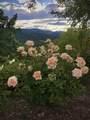 5196 Pioneer Road - Photo 77