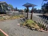 13341 Cinder Drive - Photo 54