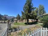 13341 Cinder Drive - Photo 58