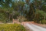 464 Grays Creek Road - Photo 32