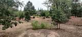 9701 Lower River Road - Photo 32