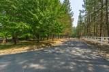 14336 Evans Creek Road - Photo 9