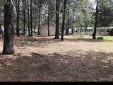 52940 Forest Way - Photo 15