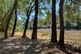 1549 Sleepy Hollow Loop - Photo 54
