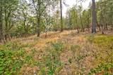 483 Crestview Loop - Photo 23