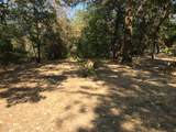 0 Lower River Road - Photo 10