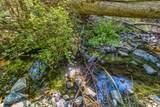 21875 Evans Creek Road - Photo 46