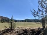 552070 Anderson Ranch Road - Photo 46