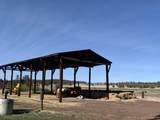 552070 Anderson Ranch Road - Photo 48