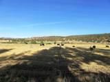 552070 Anderson Ranch Road - Photo 52