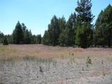 56835-5 Nest Pine Drive - Photo 7