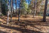 0-Lot 175 Soda Springs Drive - Photo 9