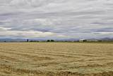 6977 Adams Drive - Photo 64