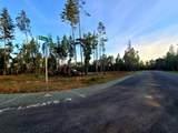 Ellison Loop - Photo 9