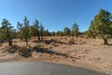 1012 Trail Creek Drive - Photo 11
