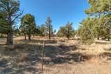 1012 Trail Creek Drive - Photo 21