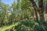 1200 Wagon Trail Drive - Photo 42