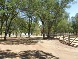 11794 Dixie Road - Photo 18