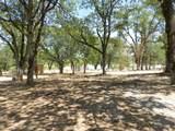 11794 Dixie Road - Photo 20