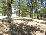 11794 Dixie Road - Photo 22
