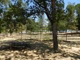 11794 Dixie Road - Photo 29