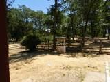 11794 Dixie Road - Photo 30