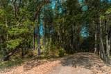 464 Grays Creek Road - Photo 19