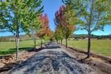 3710 Reese Creek Road - Photo 8