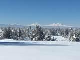4695 Antelope Drive - Photo 28