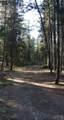 17021 Island Loop Way - Photo 11