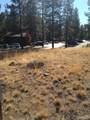 945 Desperado Trail - Photo 13
