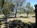 12501 Chinook Drive - Photo 39
