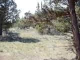 12501 Chinook Drive - Photo 50