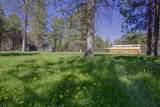 50186 Collar Drive - Photo 4