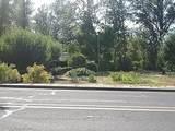 1780 Cloverlawn Drive - Photo 45