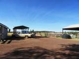 552070 Anderson Ranch Road - Photo 9