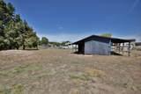3910 La Mesa Lane - Photo 20