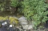 11383 Wagner Creek Road - Photo 19