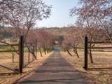5299 Pioneer Road - Photo 39