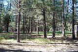 51872 Pine Loop Drive - Photo 16