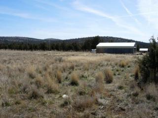 12322 SE Redtail Lane Tl 702, Prineville, OR 97754 (MLS #201301450) :: Birtola Garmyn High Desert Realty