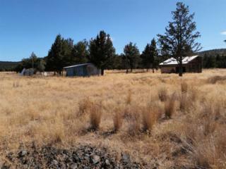 12398 SE Redtail Lane Tl 703, Prineville, OR 97754 (MLS #201301453) :: Birtola Garmyn High Desert Realty