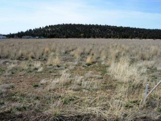 12323 SE Redtail Lane Tl 705, Prineville, OR 97754 (MLS #201301464) :: Birtola Garmyn High Desert Realty