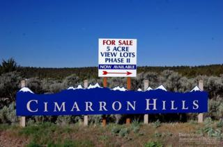 6501 SE Riverdance Road, Prineville, OR 97754 (MLS #201504403) :: Birtola Garmyn High Desert Realty
