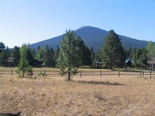 26279 SW Metolius Meadows Drive, Camp Sherman, OR 97730 (MLS #201507794) :: Birtola Garmyn High Desert Realty