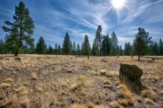 60201 Sunset View Drive, Bend, OR 97702 (MLS #201510910) :: Birtola Garmyn High Desert Realty