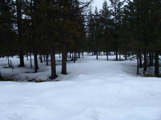 0 Lot 16 Birchwood Road, La Pine, OR 97739 (MLS #201600372) :: Birtola Garmyn High Desert Realty