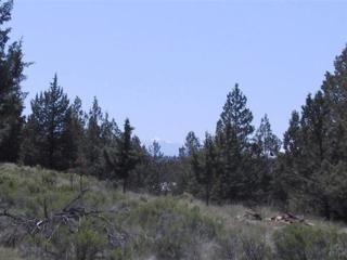 13601 SW Canyon Drive, Terrebonne, OR 97760 (MLS #201603425) :: Birtola Garmyn High Desert Realty